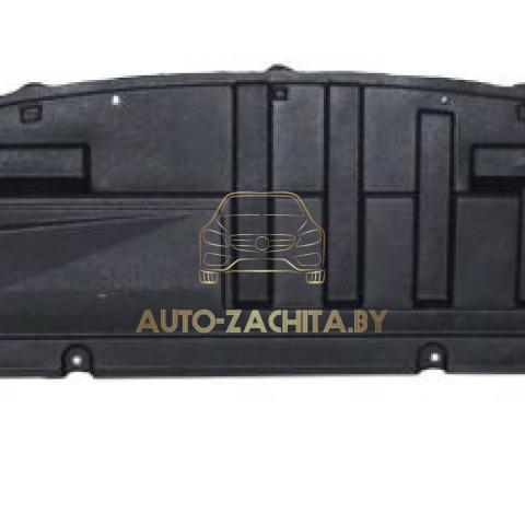 Защита бампера RENAULT Clio 3